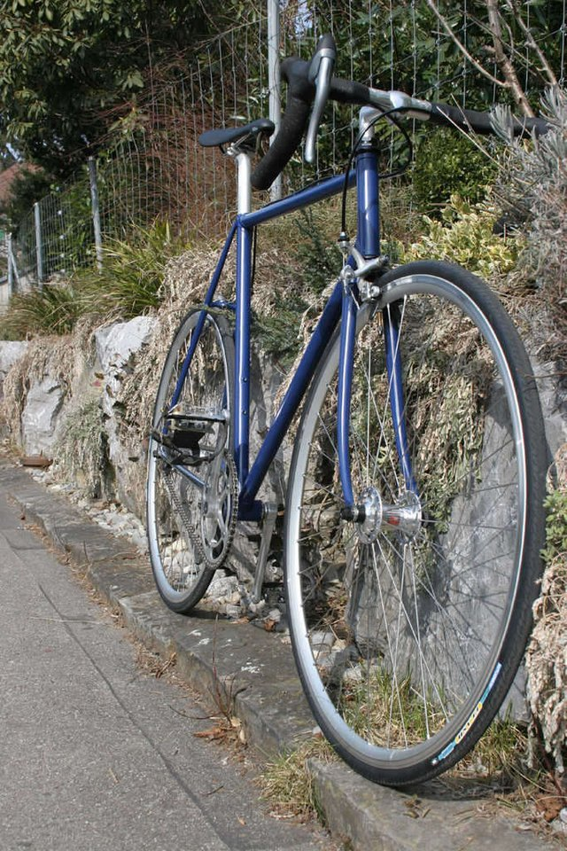 Singlespeed Bike Test & Vergleich (Juni 2020) - optical-mark-recognition.com