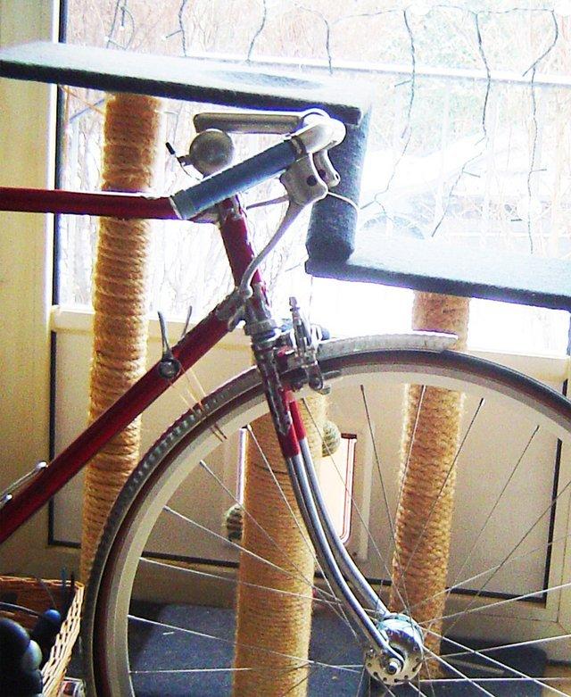 singlespeed-mountainbiking [Archiv] - Bikeboard